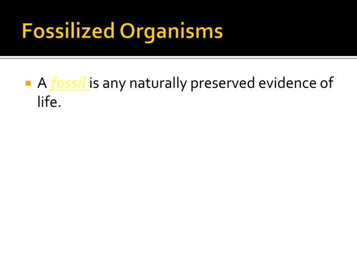 Fossilized Organisms
