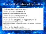 how the brain takes in information