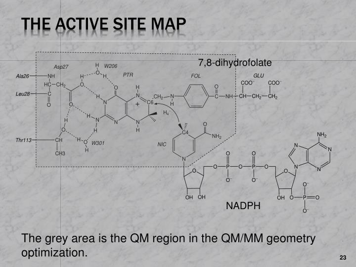 The Active Site Map