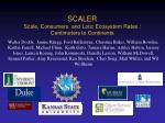 scaler scale consumers and lotic ecosystem rates centimeters to continents