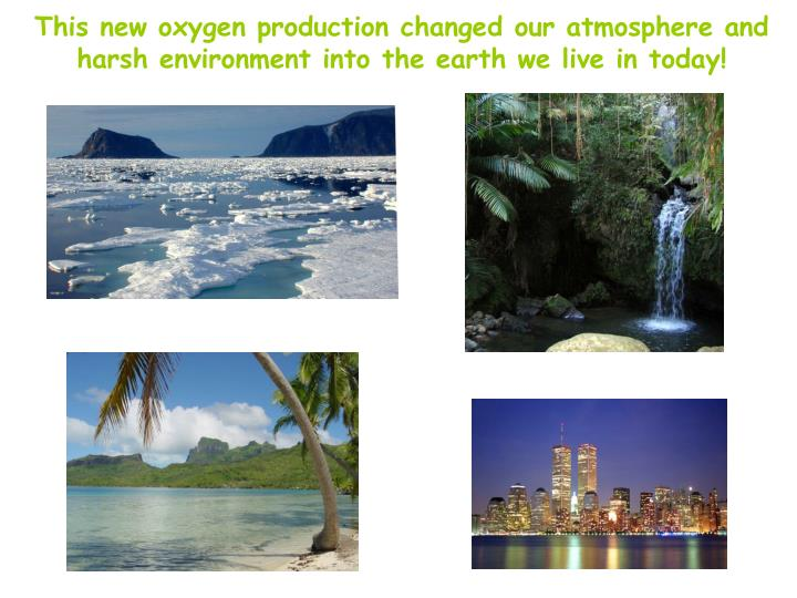 This new oxygen production changed our atmosphere and harsh environment into the earth we live in today!