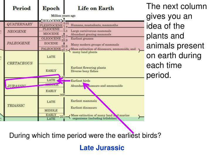 The next column gives you an idea of the plants and animals present on earth during each time period.