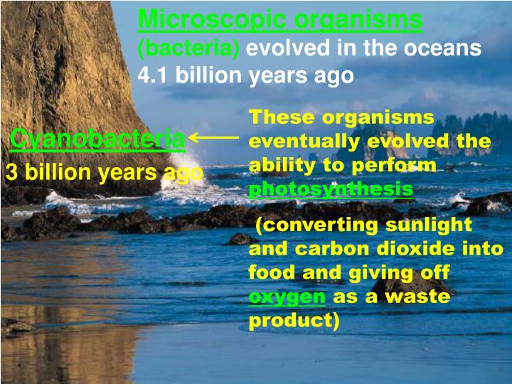 Microscopic organisms