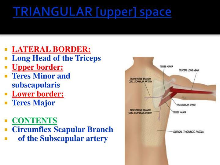 TRIANGULAR [upper] space
