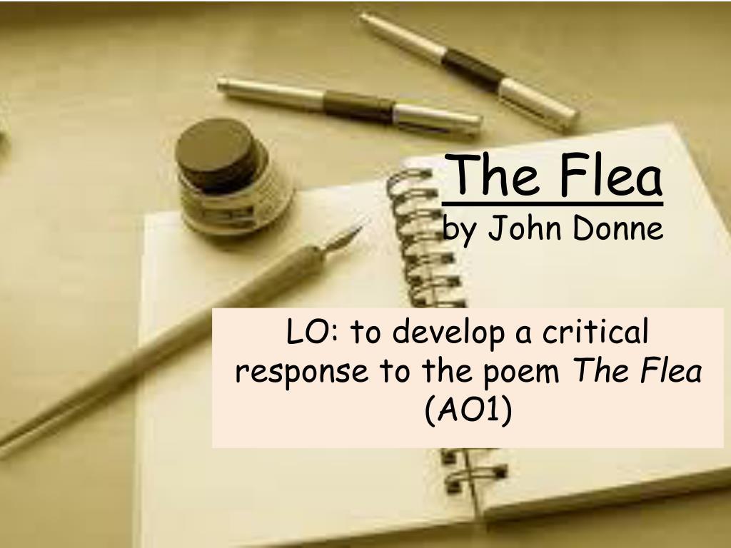 jonne donne the flea