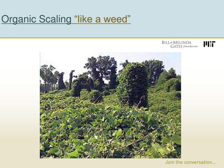 Organic Scaling