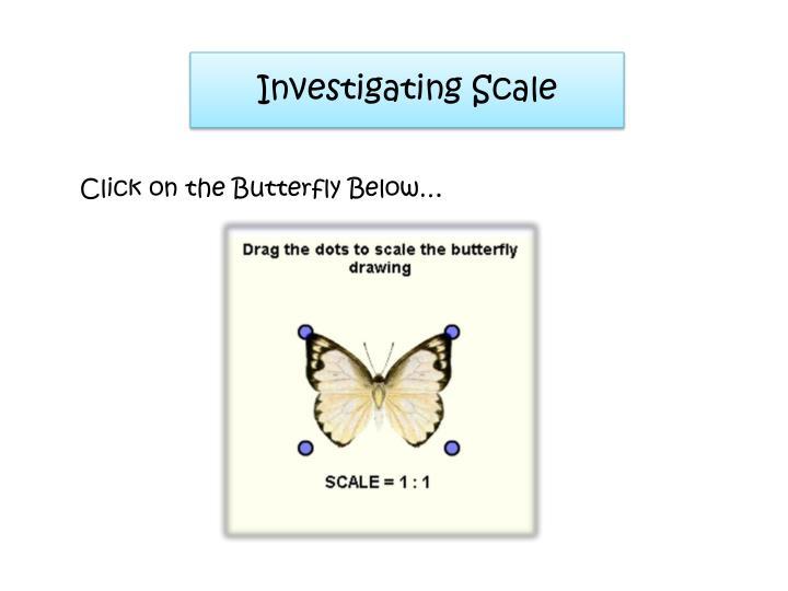 Investigating Scale