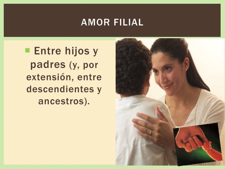 Amor filial