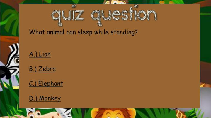 What animal can sleep while standing?