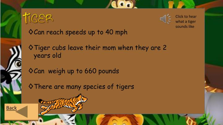 Click to hear what a tiger sounds like