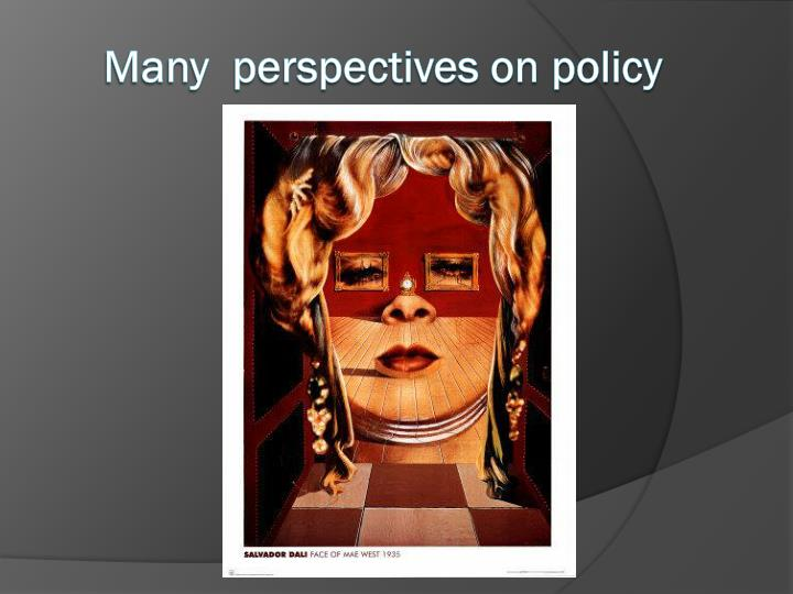 Many  perspectives on policy
