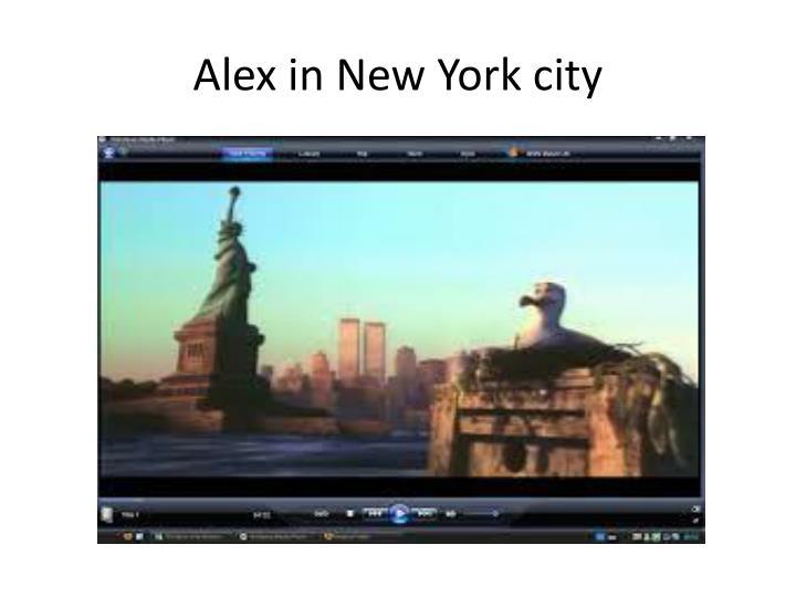 Alex in new york city