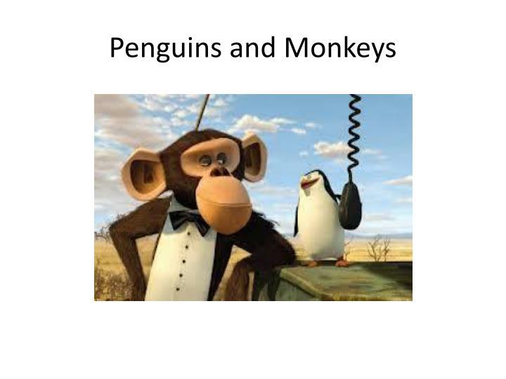 Penguins and Monkeys