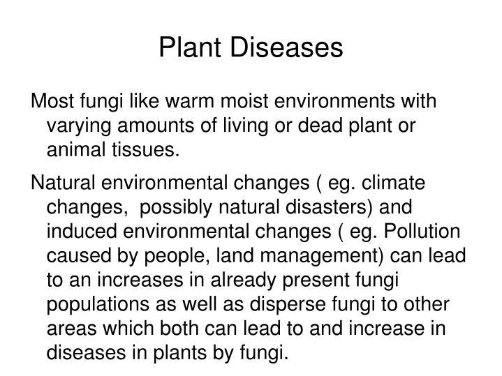 Plant Diseases