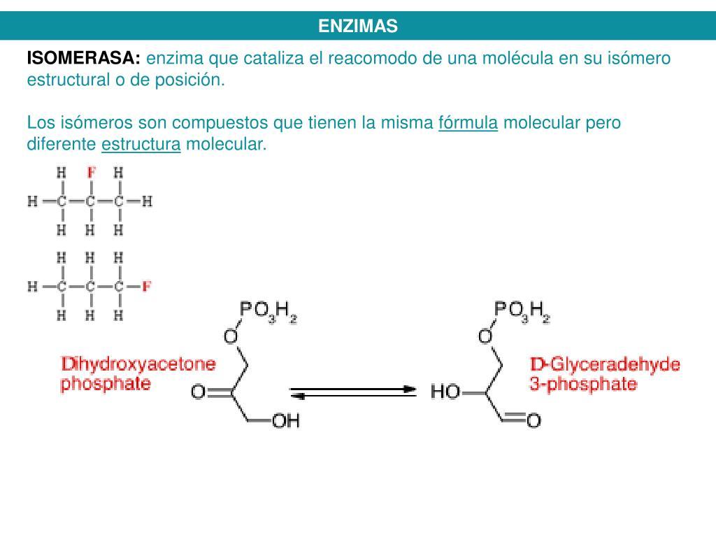 Medicina en calcular metabolismo basal hombre