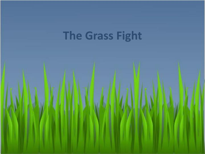 The grass fight