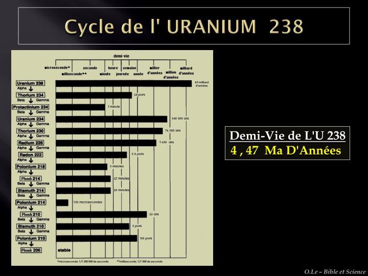 Cycle de l' URANIUM  238