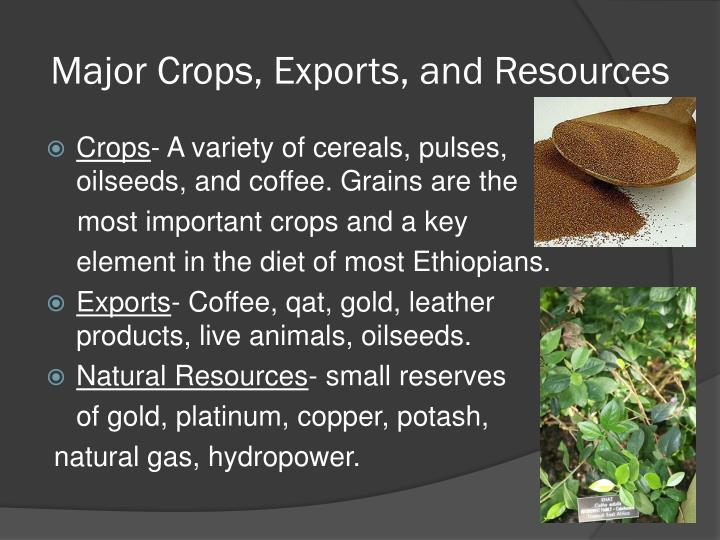 Major Crops, Exports, and Resources