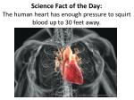science fact of the day the human heart has enough pressure to squirt blood up to 30 feet away