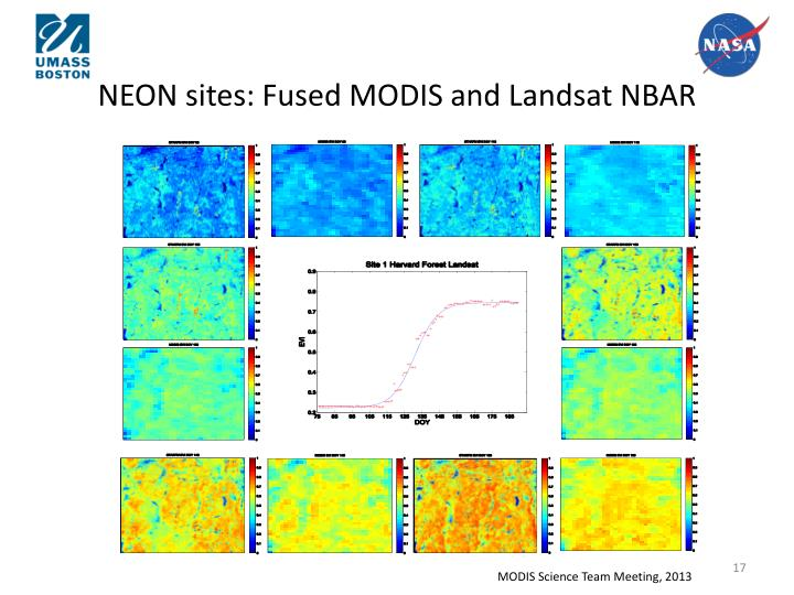 NEON sites: Fused MODIS and