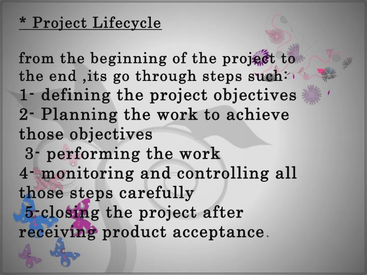 * Project Lifecycle