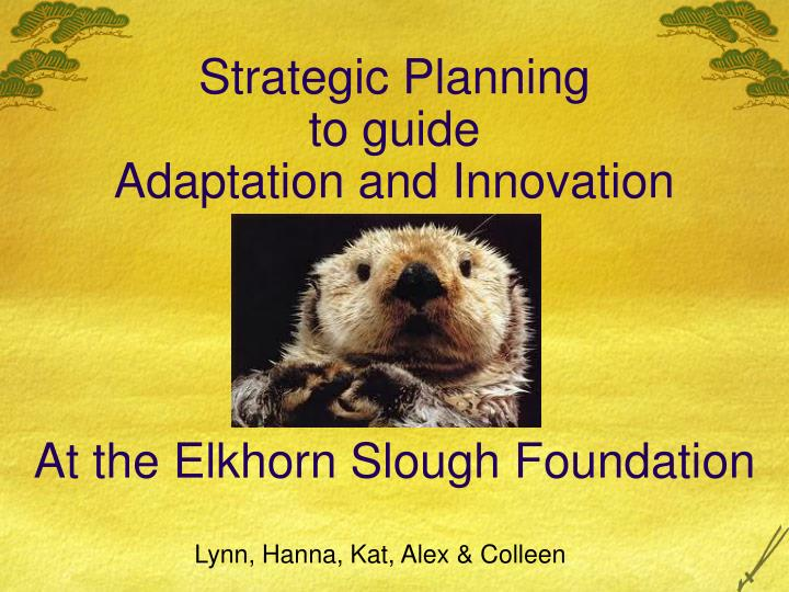 strategic planning to guide adaptation and innovation n.