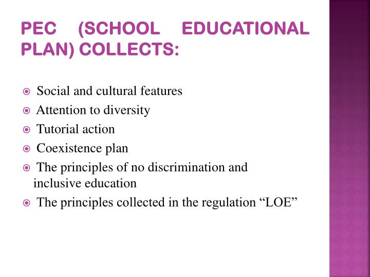 PEC (School Educational Plan) collects: