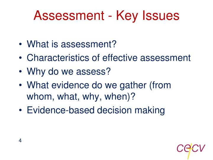 Assessment - Key Issues
