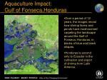 aquaculture impact gulf of fonseca honduras