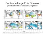 decline in large fish biomass fish 100 hooks on japanese longlines