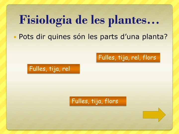 Fisiologia de les plantes