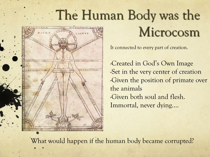 The Human Body was the