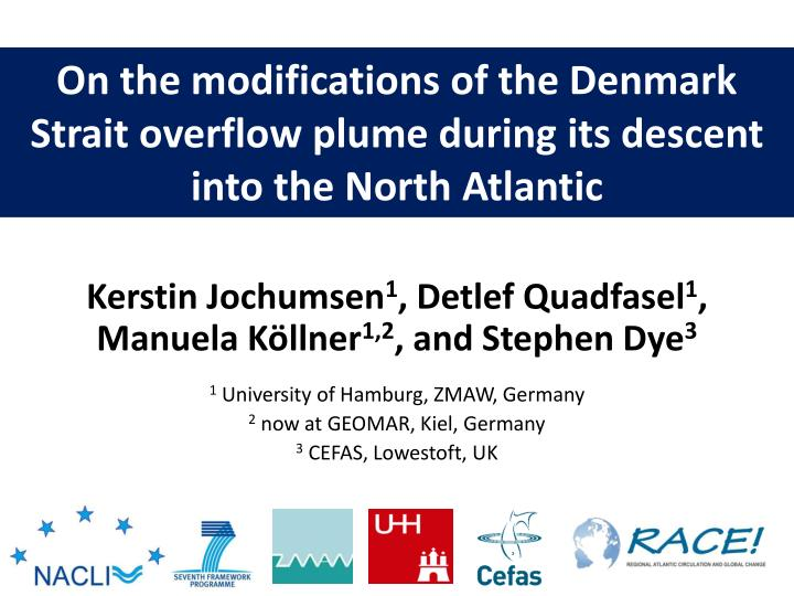 On the modifications of the Denmark Strait overflow plume during its descent into the North Atlantic