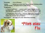 pilek atau flu