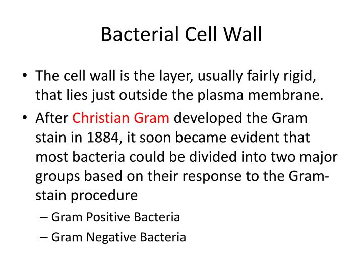 PPT - Prokaryotic Cell Structure and Function PowerPoint ...  PPT - Prokaryot...