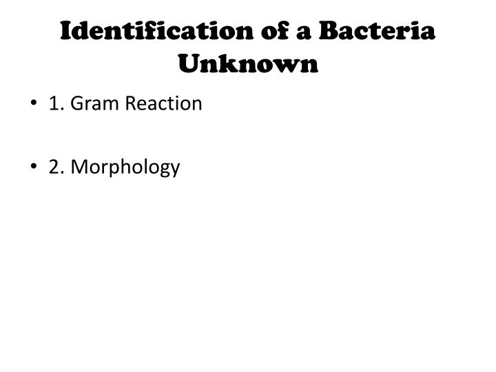 Identification of a Bacteria Unknown