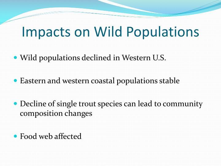 Impacts on Wild Populations