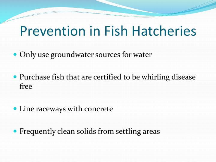Prevention in Fish Hatcheries