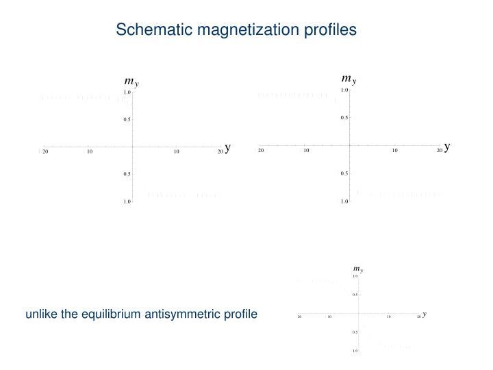 Schematic magnetization profiles
