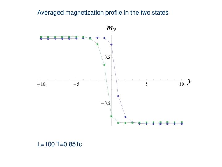 Averaged magnetization profile in the two states