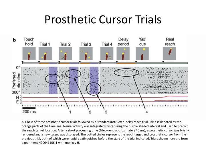 Prosthetic Cursor Trials