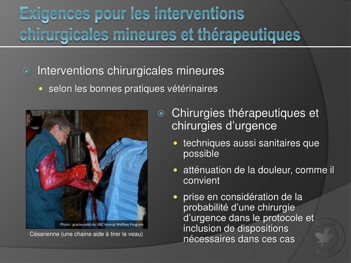 Exigences pour les interventions chirurgicales mineures et thérapeutiques