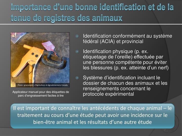 Importance d'une bonne identification et de la tenue de registres des animaux