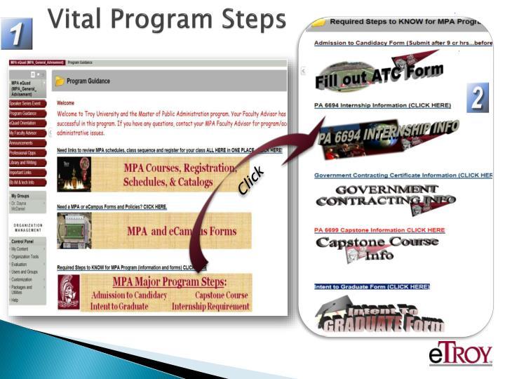 Vital Program Steps