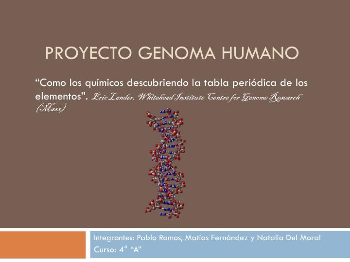Ppt Proyecto Genoma Humano Powerpoint Presentation Free