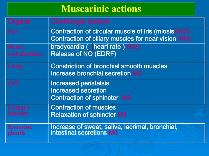 Muscarinic actions