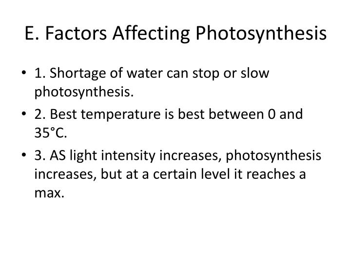 E. Factors Affecting Photosynthesis