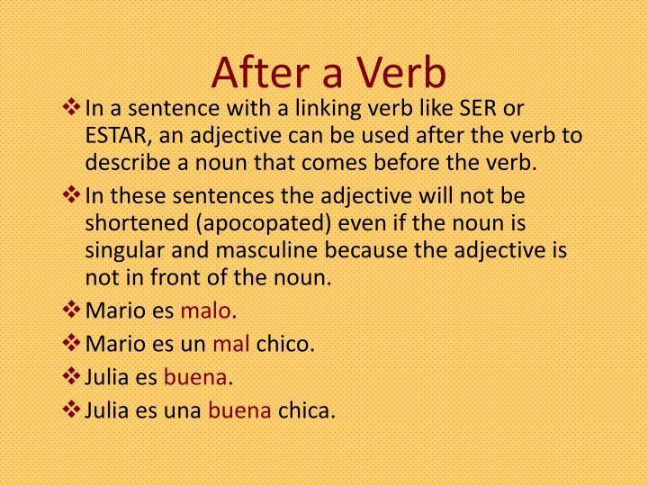 After a Verb