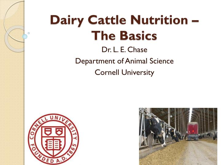 dairy cattle nutrition the basics n.