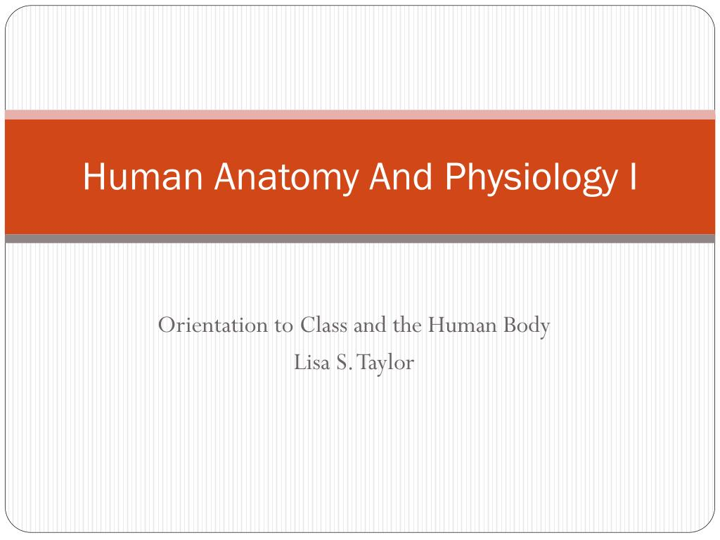 PPT - Human Anatomy And Physiology I PowerPoint Presentation - ID ...
